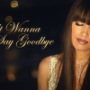 Music Video: Don't Wanna Say Goodbye